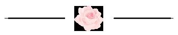 Rose in Aquarell als Unterteiler
