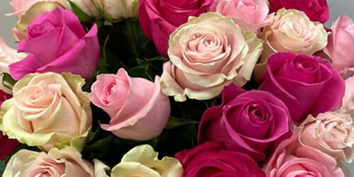 Frühlingsstrauss Rosen