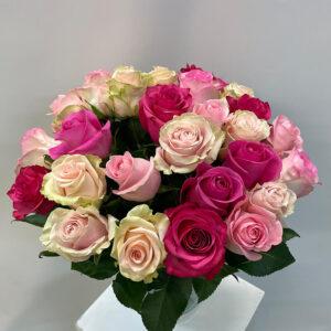 rosenstrauss in rosa